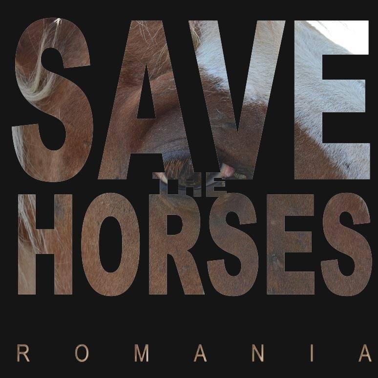 Save The Horses Romania
